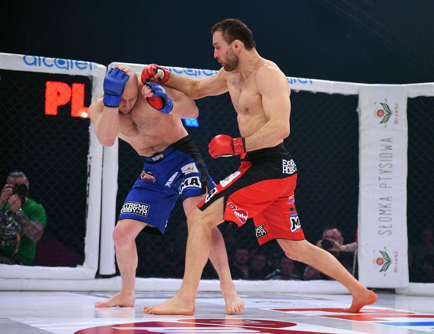Saiba tudo sobre a história do MMA no Brasil